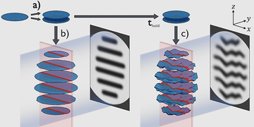 An experimental scheme to observe non-equilibrium dynamics of 2D gases via matter wave interference.
